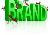 HR Branding through Crowdsourcing